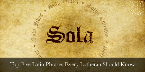 Sweet Latin Phrases